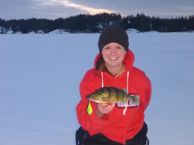 Rat Lake Perch (2)