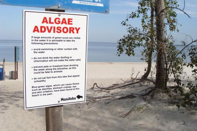 Algae warning sign – Grand Beach, Manitoba.
