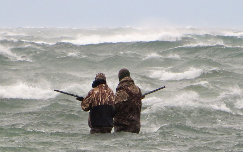 Chris Benson (left) plunges into the crashing Lake Ontario waves in search of long-tailed ducks. ©Adrian Skok