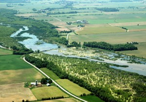 An aerial view of conserved wetlands along Quebec's South River, within an intensive agricultural landscape.