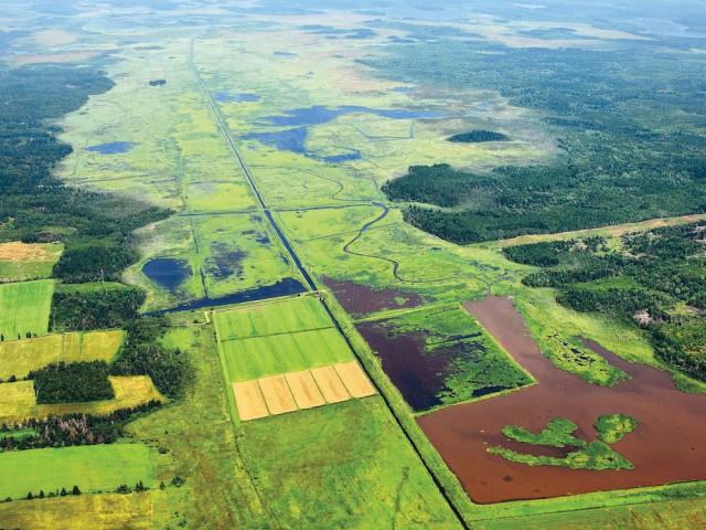 An aerial shot of Missaquash Marsh.